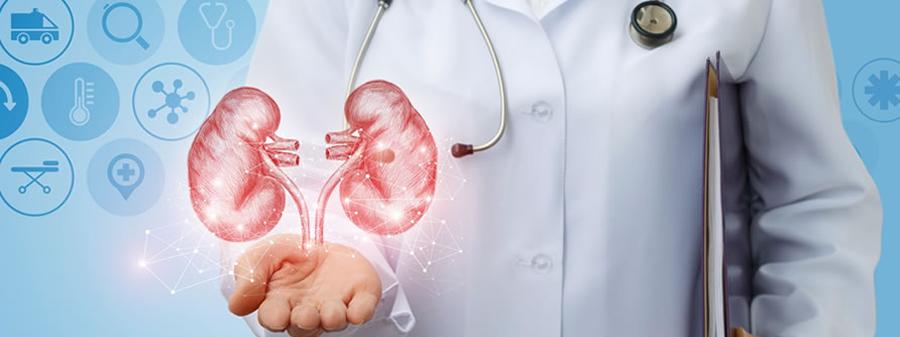 Kidney Disease, an Underestimated Killer