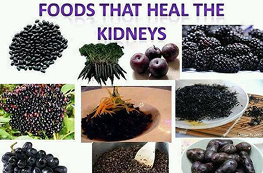 Foods that heal the kidneys